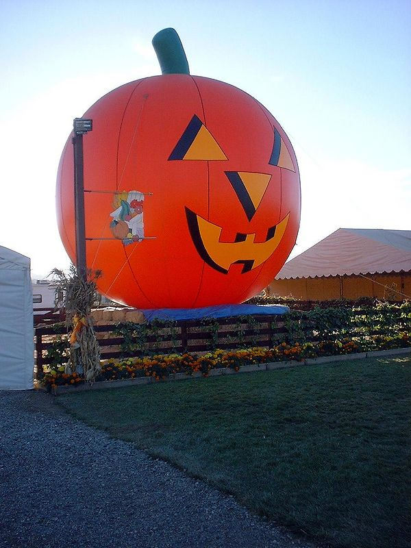 Great Halloween Pumpkin Patch