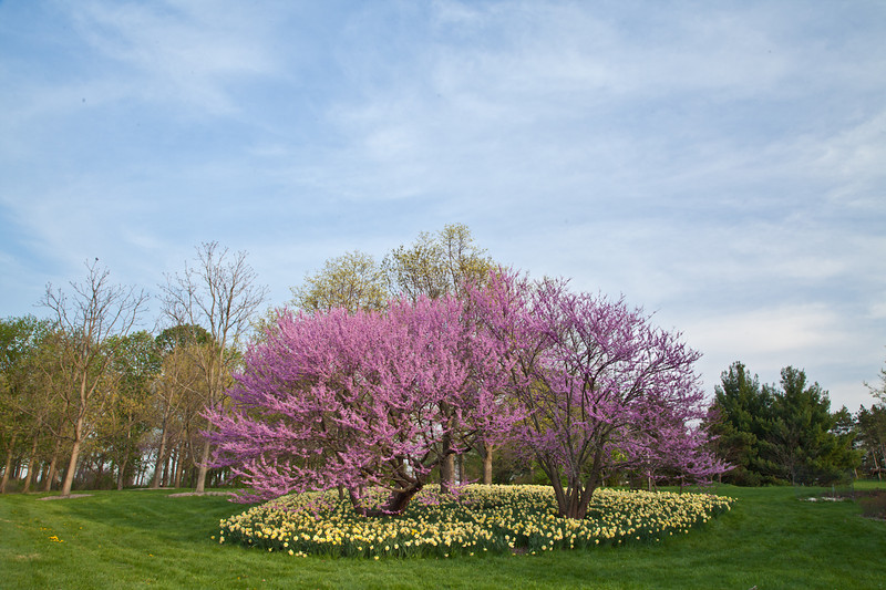 Spring13-0245.jpg