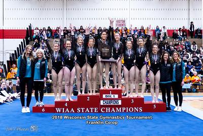 HS Sports - WI State Team Gymnastics Tournament - March 02, 2018