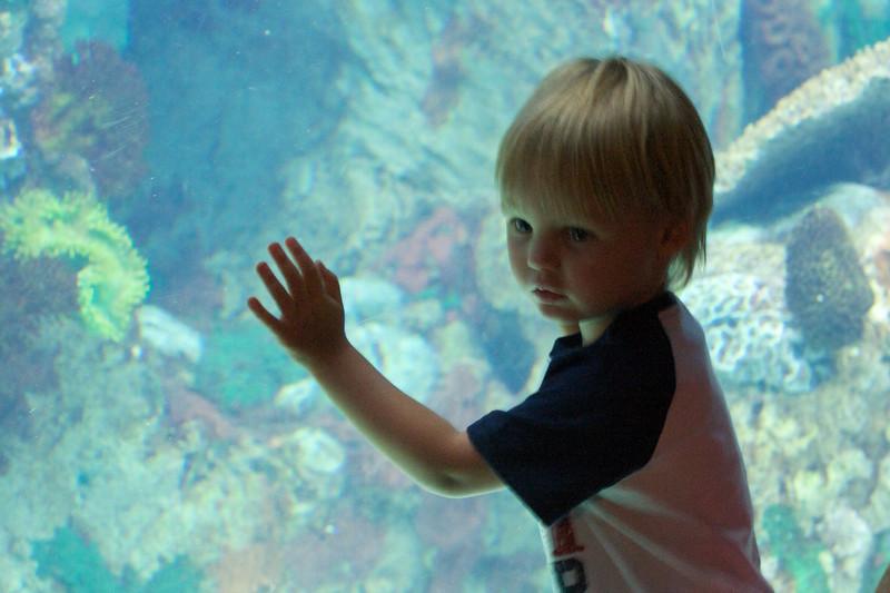 Zoo_Trip_54.jpg