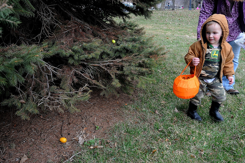 . Daniel Trego, 2 1/2, looks for eggs along a tree line. (Pioneer Press: Sherri LaRose-Chiglo)