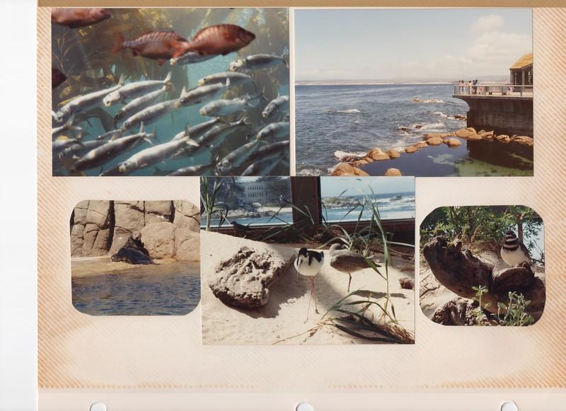 5-16-1991 3.jpg