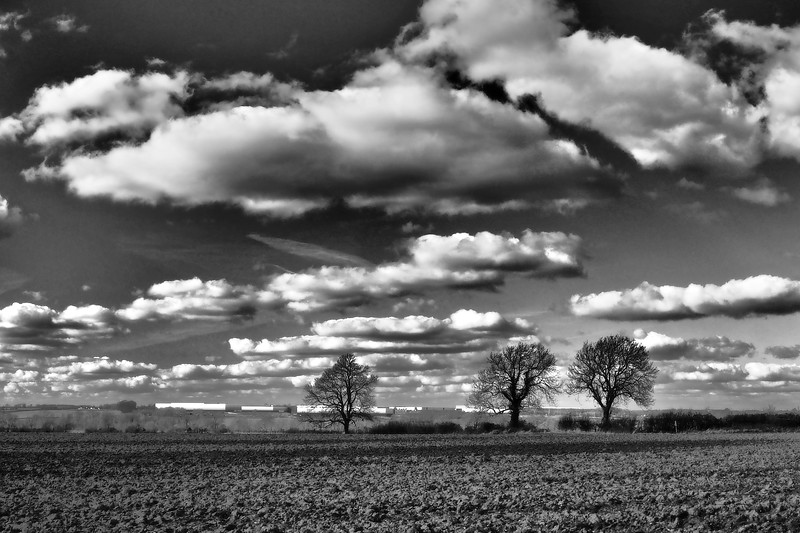Landscape with clouds monochrome
