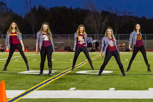 DSHS High Steppers Halftime Entertainment - Wed, Mar 5, 2014