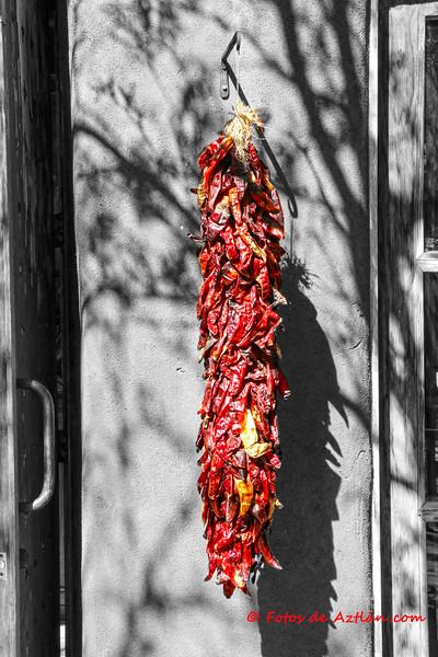 Santa Fe Chile IMG_3966.jpg
