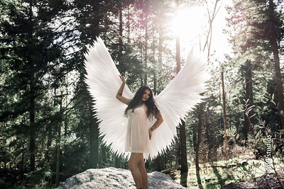 Angel Tiffany