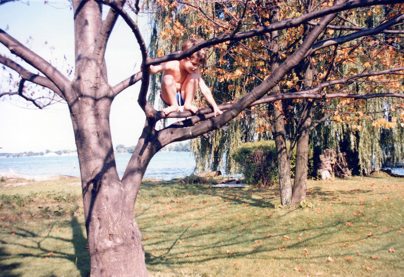 1986 AJ in the tree from which he fell and broke his arm.jpeg