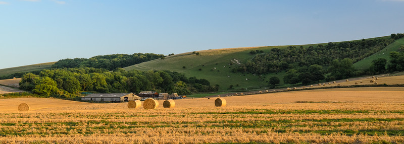 Hay bales in the South Downs