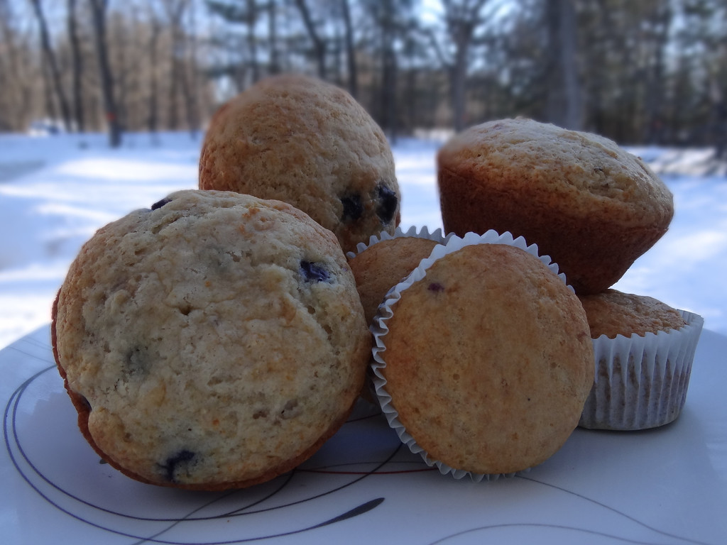 . Or any season throughout the year - treat yourself and your kids to a wholesome Florida Orange Juice Blueberry-Orange Muffin.