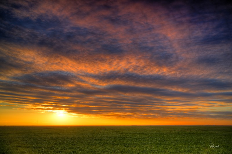 Sunset and Wheat Field #2