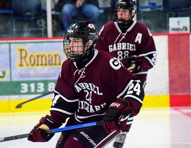 HS Sports -  Riverview Richard Cheslea Hockey Division 3