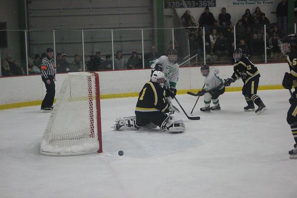 LDC boys hockey vs. Hutchinson, 1-14-17