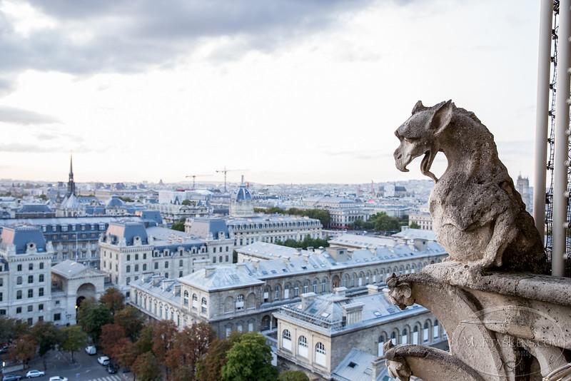 Notre Dame, Paris-32.jpg
