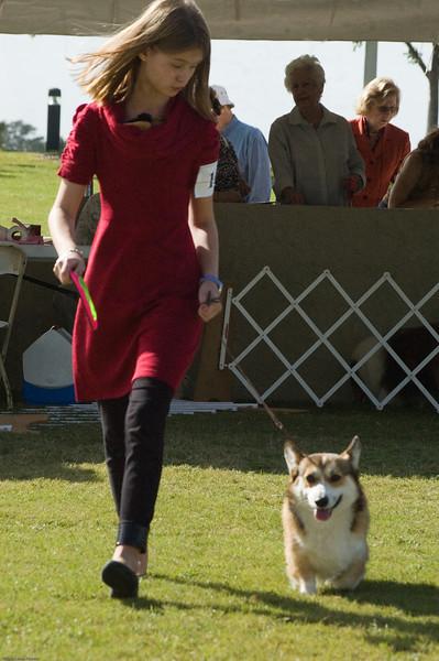 Boca Raton Dog Show-109.jpg