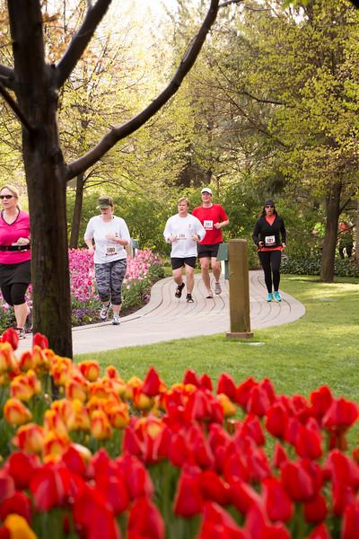 TulipFestHalfMarathon_Runners_Gardens_2015_IMG_5117.jpg