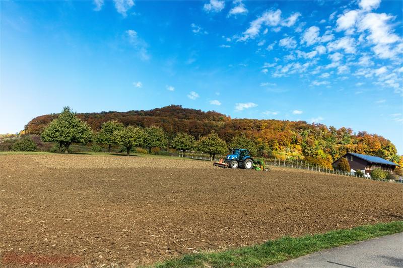 2016-10-22 Herbststimmung Aargau 0U5A1045.jpg