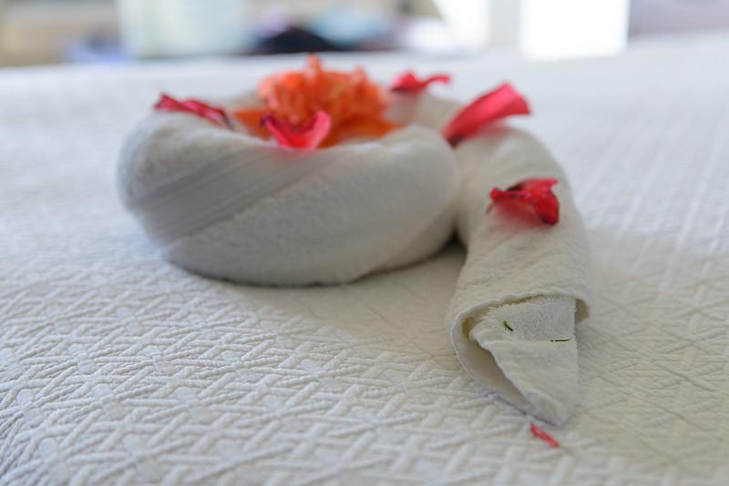 Snake towel art