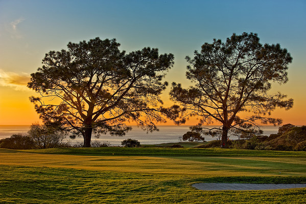 FARMERS INSURANCE OPEN AT TORREY PINES - JAN 2011