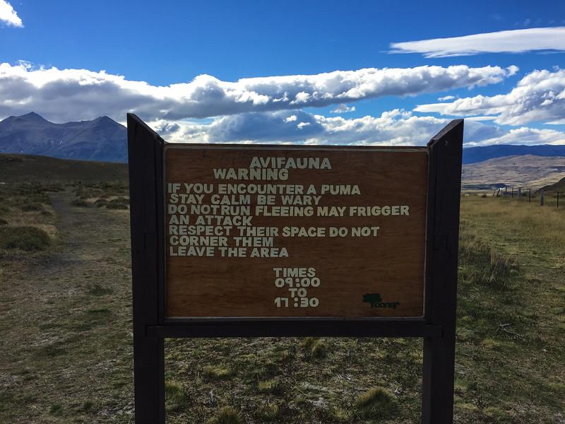 Patagonia18iphone-7185.jpg