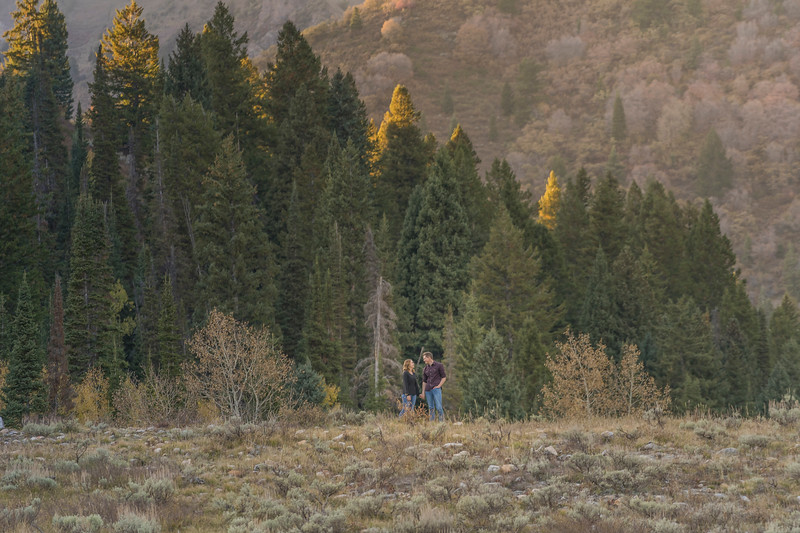 jordan pines engagement photography ryan hender films Tori + Bronson-50.jpg