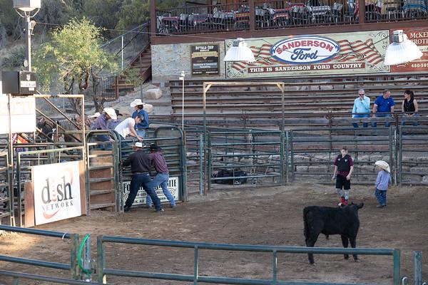 Bull Riding Buffalo Chip 30 April 2021