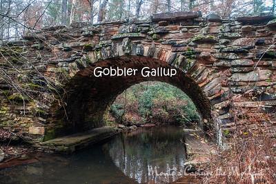 Gobbler Gallup