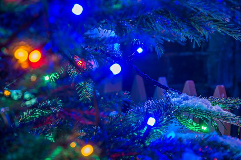 Christmas Tree lights, Arley