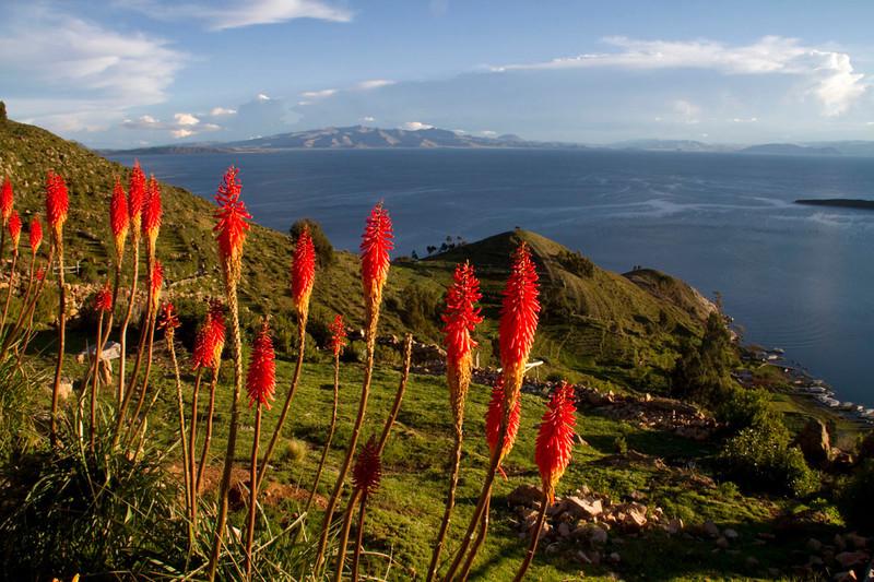 Bolivia-Peru0507.jpg