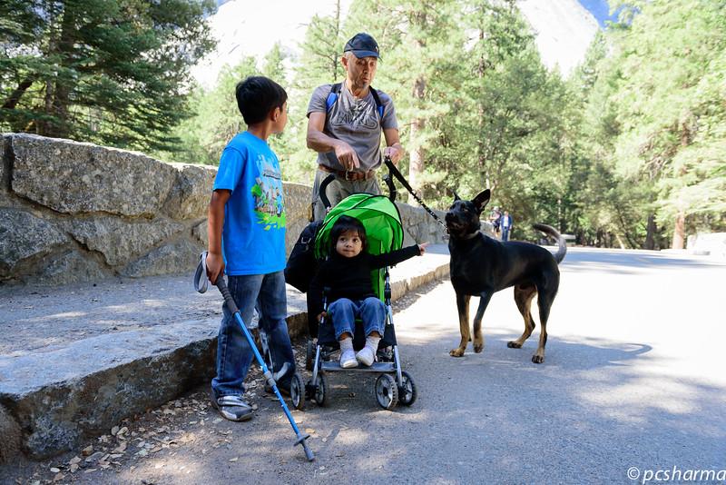Rana_Yosemite_2015_Camping-64.jpg