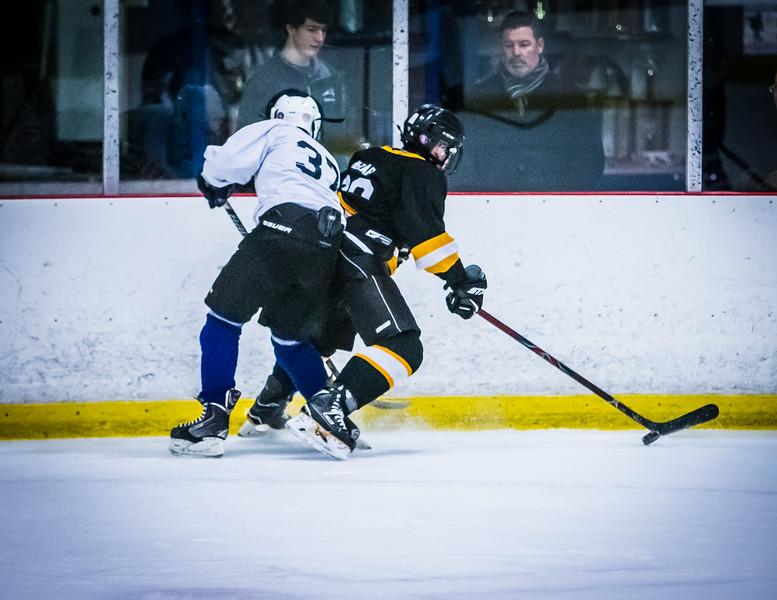 Bruins2-488.jpg