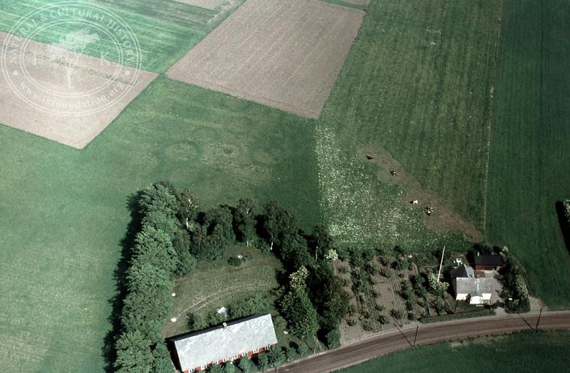 0,25km southeast Kvidinge monument | EE.0950