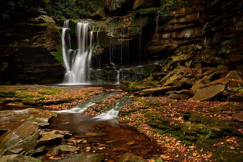 DA099,DT,Elakala Falls,Allegheny Mountains,West Virginia.jpg