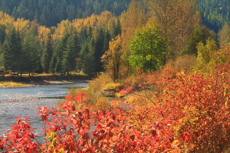 fall 2019 cda river-1600.jpg
