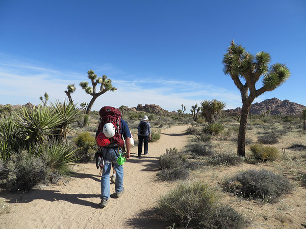 JOSHUA TREE: APRIL 24-27, 2014