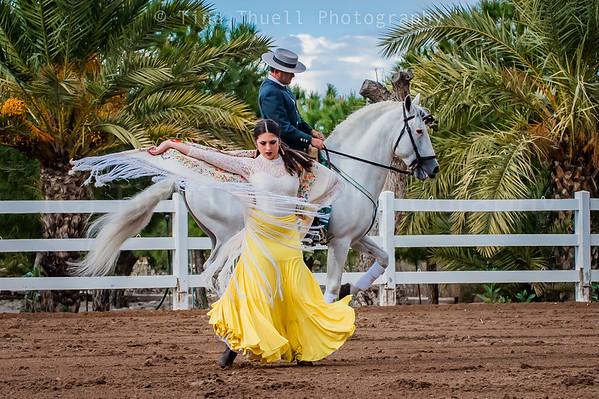 Spanish Dancer - Spain
