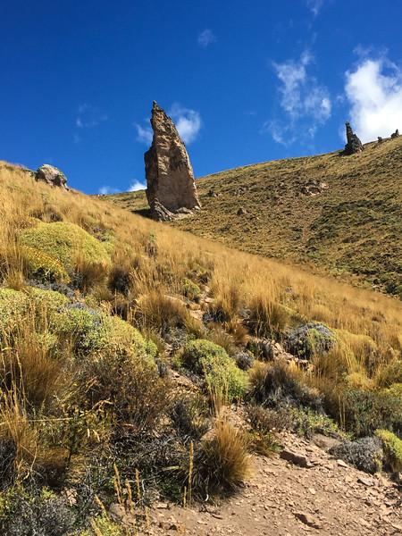 Patagonia18iphone-4991.jpg