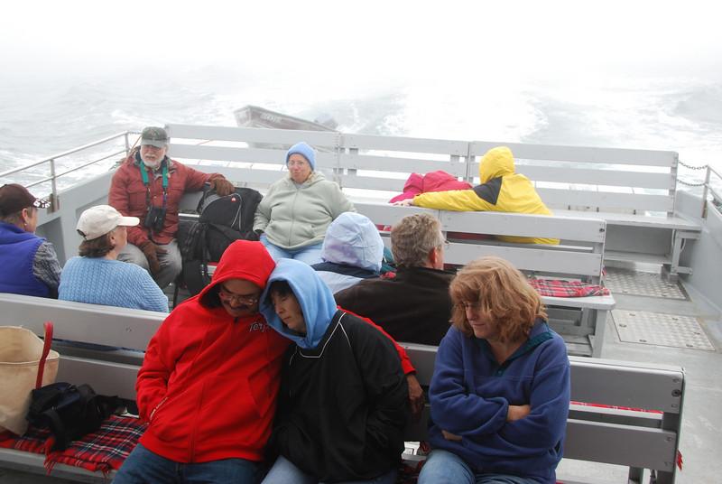 Machias Seal Island Trip - 015