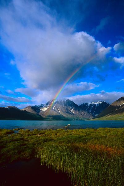 turquoiserainbow.jpg