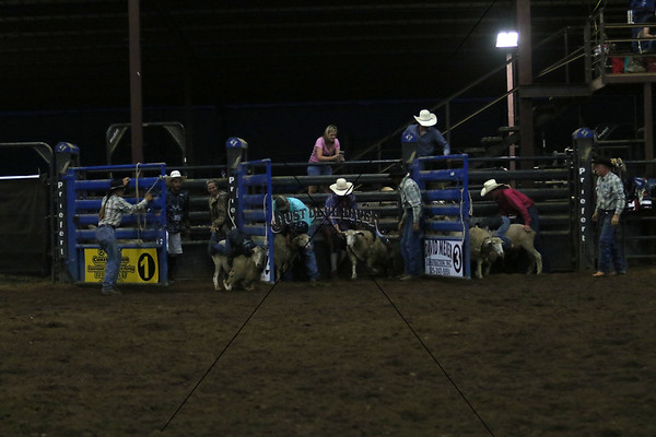 Friday Night Mutton Bustin II