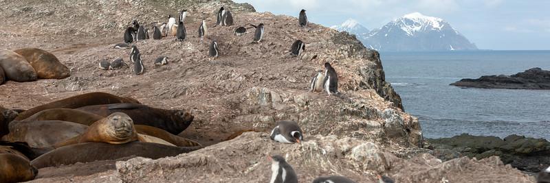2019_01_Antarktis_02003.jpg