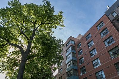 226 Linden Blvd