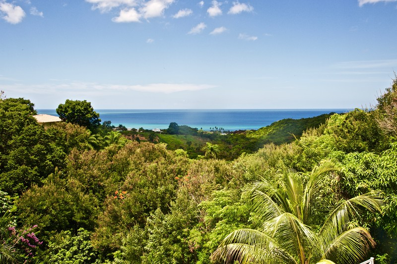 Rincon Puerto Rico from restaurant on top of hill.jpg