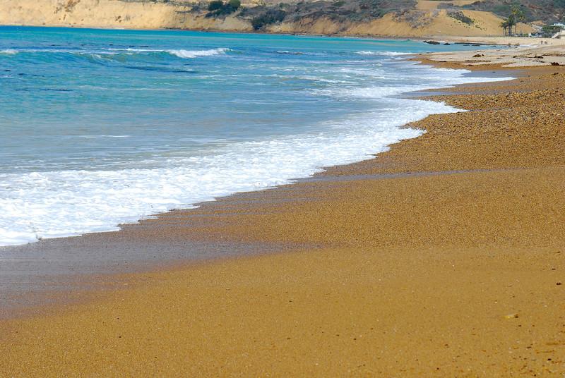 dogs_beach-005.jpg