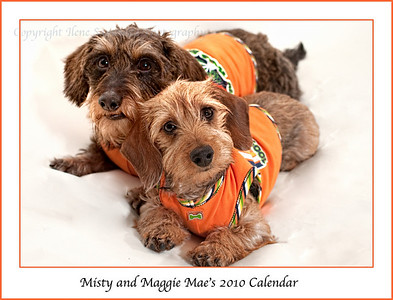 2010 Maggie Mae and Misty Calendar