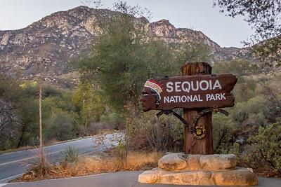 2014  Sequoia National Park