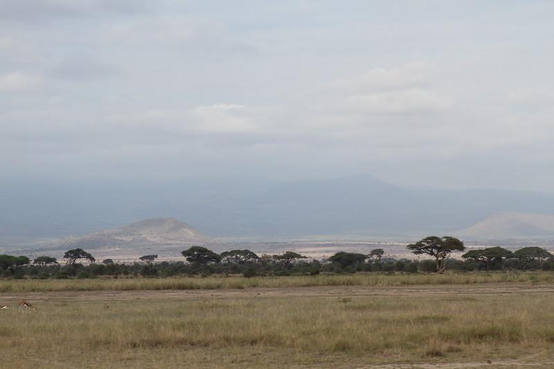 Kenya 2019 #2 575.JPG