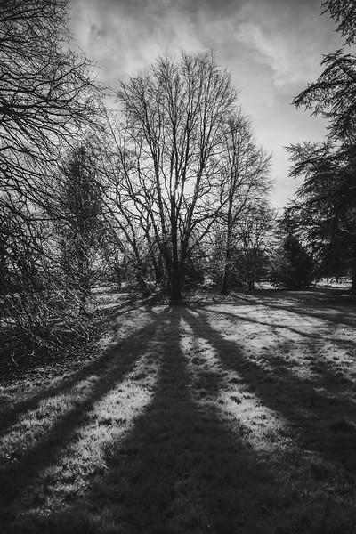 Wyndham at Blarney_0137.jpg
