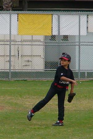 2008 AAA Baseball