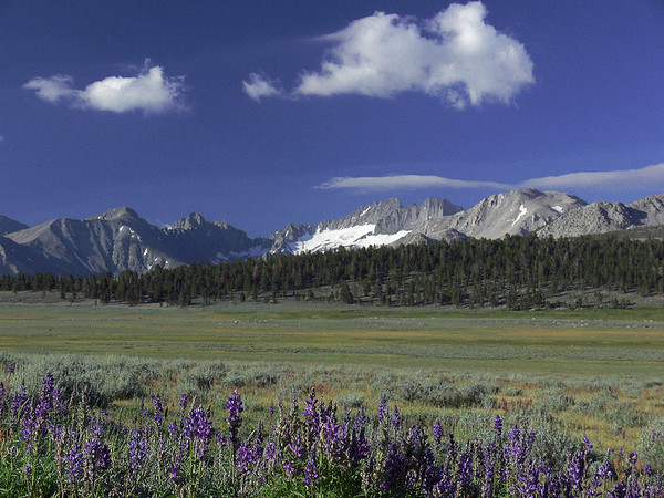 Landscapes of the Eastern Sierra Nevada
