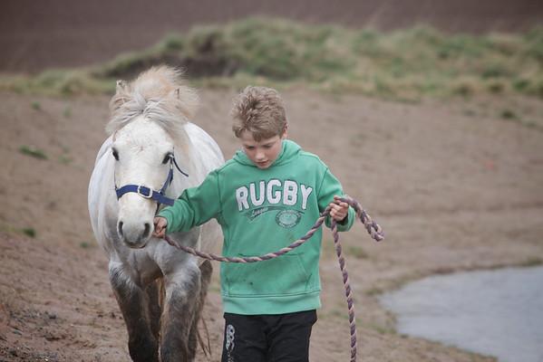 Pony Portrait 06-04-14